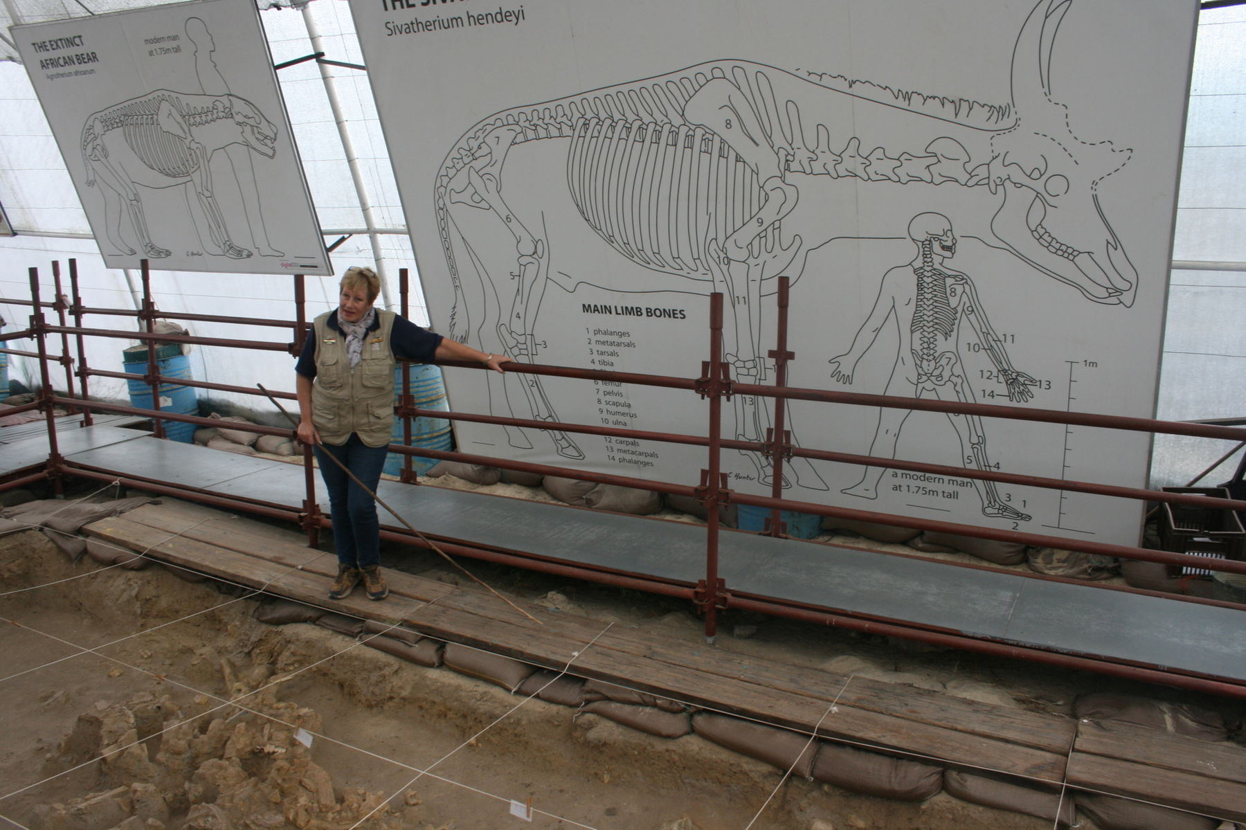 West-Coast-Fossil-Park-IMG_4068-copy